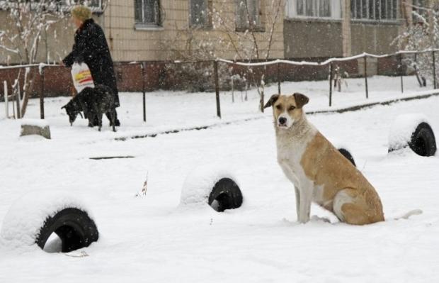 Завтра украину накроет мокрым снегом