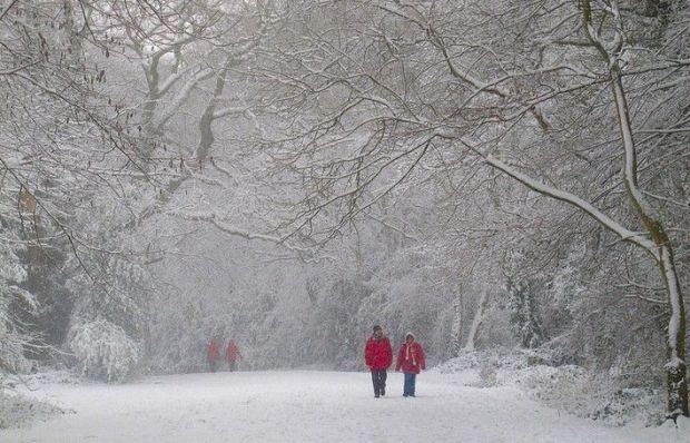 В Украину пришла зима / flickr.com/photos/hapsnaps
