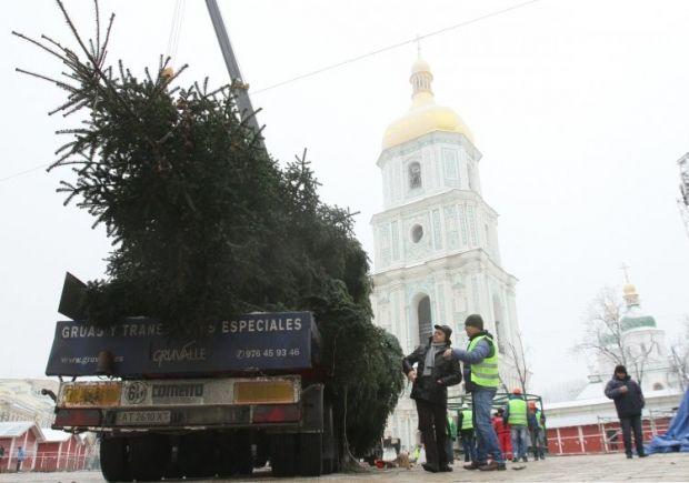Главная новогодняя елка на Софийской площади в Киеве, 8 декабря. Фото УНИАН.