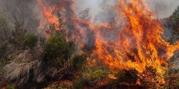 пожежа пожар / Flickr, Nicolas Emmanuel-Emile