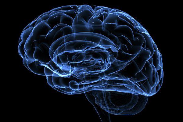 Мозг изменяется под влиянием формы жилого помещения / Фото: yoosee.ru