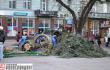 В Ивано-Франковске из-за сильного ветра упала новогодняя елка <br> Галицький кореспондент