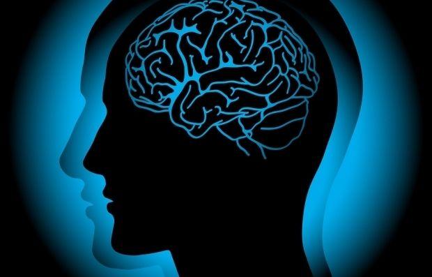 Наш мозг работает даже во сне, вспоминая, что случилось с нами в прошлом / 062.ua