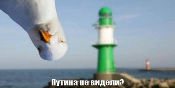 """Путин болен. Встреча с Лукашенко и Назарбаевым отменена, - """"Голос Америки"""" - Цензор.НЕТ 5741"""