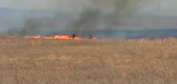 В Приамурье ожидают распространение огня из-за сильного ветра / Скриншот