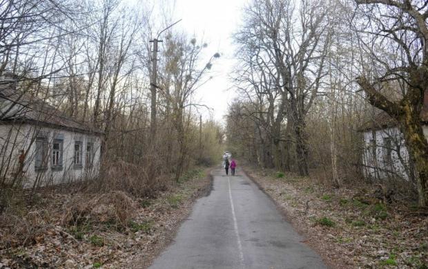 Євросоюз передав Україні установку для спалювання деревини в Чорнобильській зоні / УНІАН