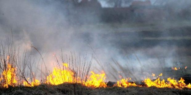 пожар / lesovod.org.ua