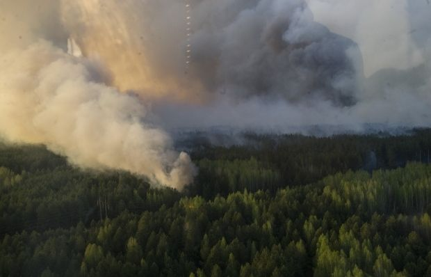 320 hectares of forest caught on fire in the Chernobyl exclusion zone / kmu.gov.ua