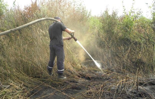 Спасатели уменьшили площадь пожара до 0,1 га / cn.mns.gov.ua
