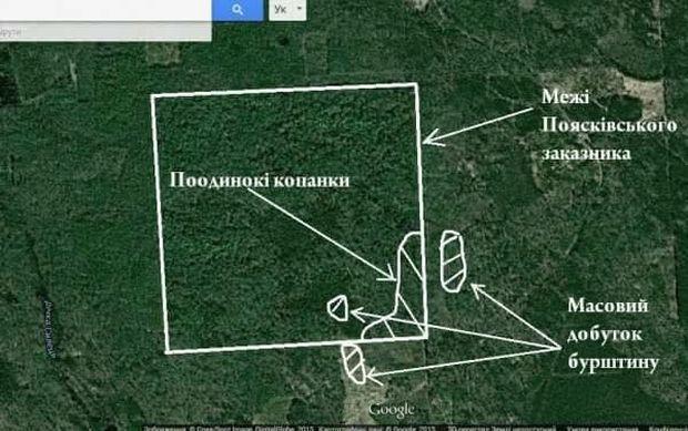 Видобуток бурштину ведеться на території лісового заказника / facebook.com/igor.shevchenko