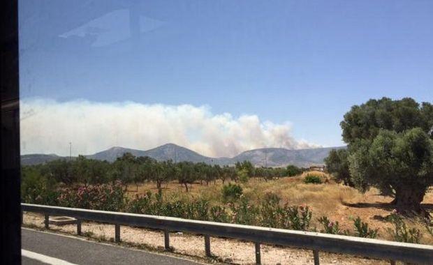 Пожар / @CStathakis