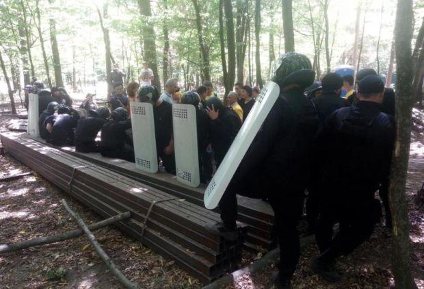 Скандальну ділянку у Чернечому лісі перевірять / divannaya-sotnya.com.ua