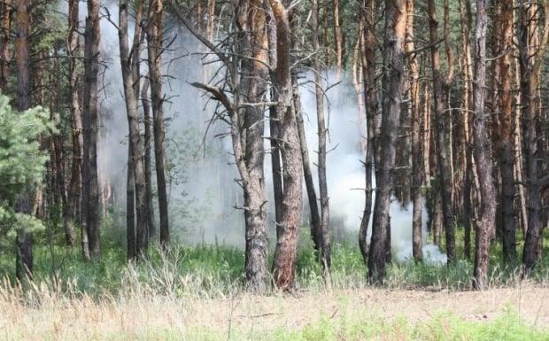 Дым в Черкассах - это следствие горения торфяников и лесного массива вблизи Киева / Фото: УНИАН