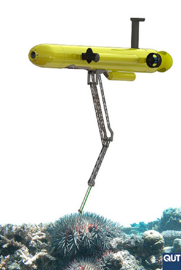 Робот работает с Большим Барьерным рифом / Queensland University of Technology