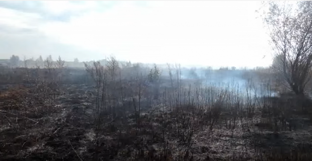 Peat continues to burn across Kyiv region / Screenshot from video