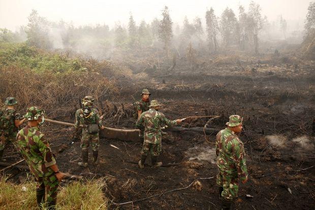 Из-за лесных пожаров в Индонезии погибли почти 20 человек