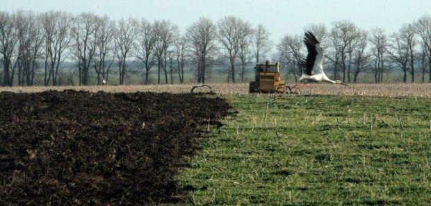 Земельный участок был захвачен в 2008 году / Фото УНИАН