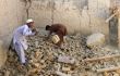 Afghanistan, Pakistan and India are continuing search and rescue operations <br> Reuters