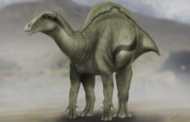 Динозавр / plos.org