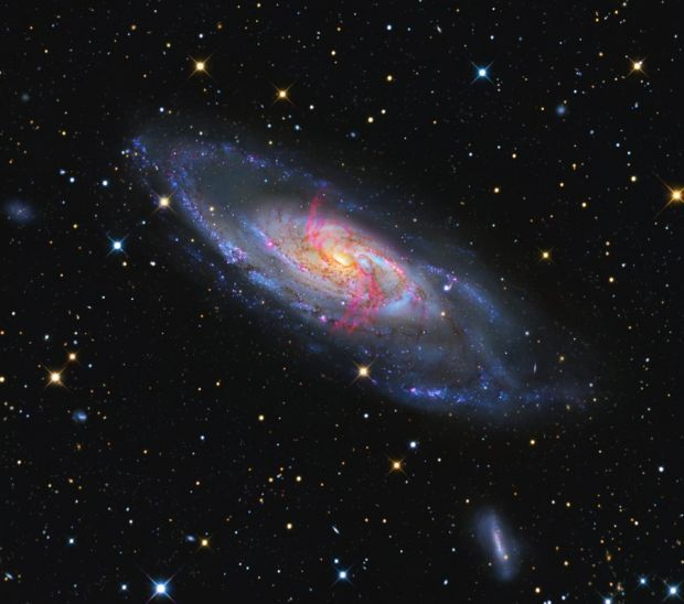 Ученые обнаружили две гигантские планеты у звезды в созвездии Большого Пса
