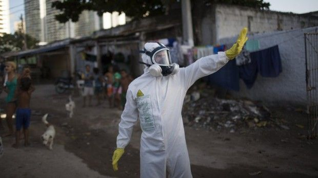 The Zika virus could infect as many as 4 million people in the Americas / Photo from gizmodo.com