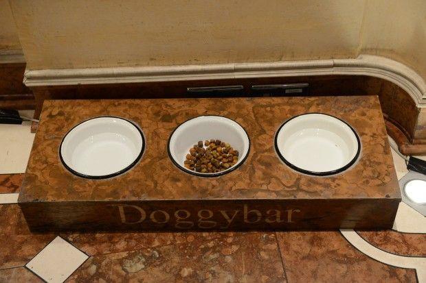 Миски з їжею та водою для поліцейських собак / УНИАН
