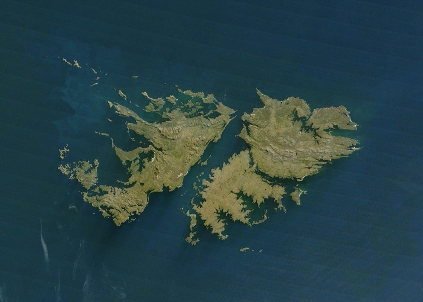 фолклендские острова / wikipedia.org