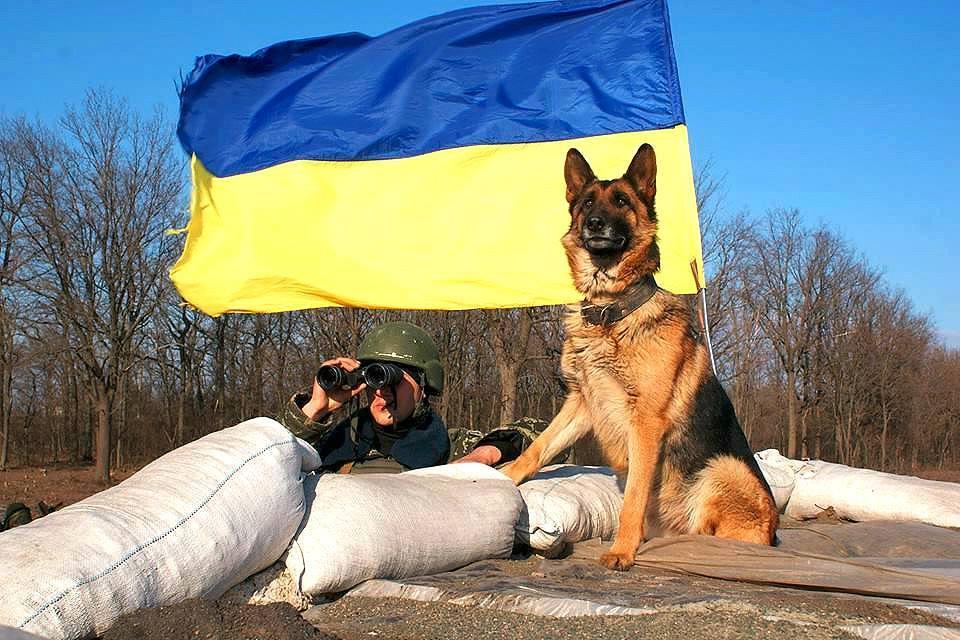Військові зайняли нові позиції на Світлодарській дузі / facebook.com/theministryofdefence.ua/