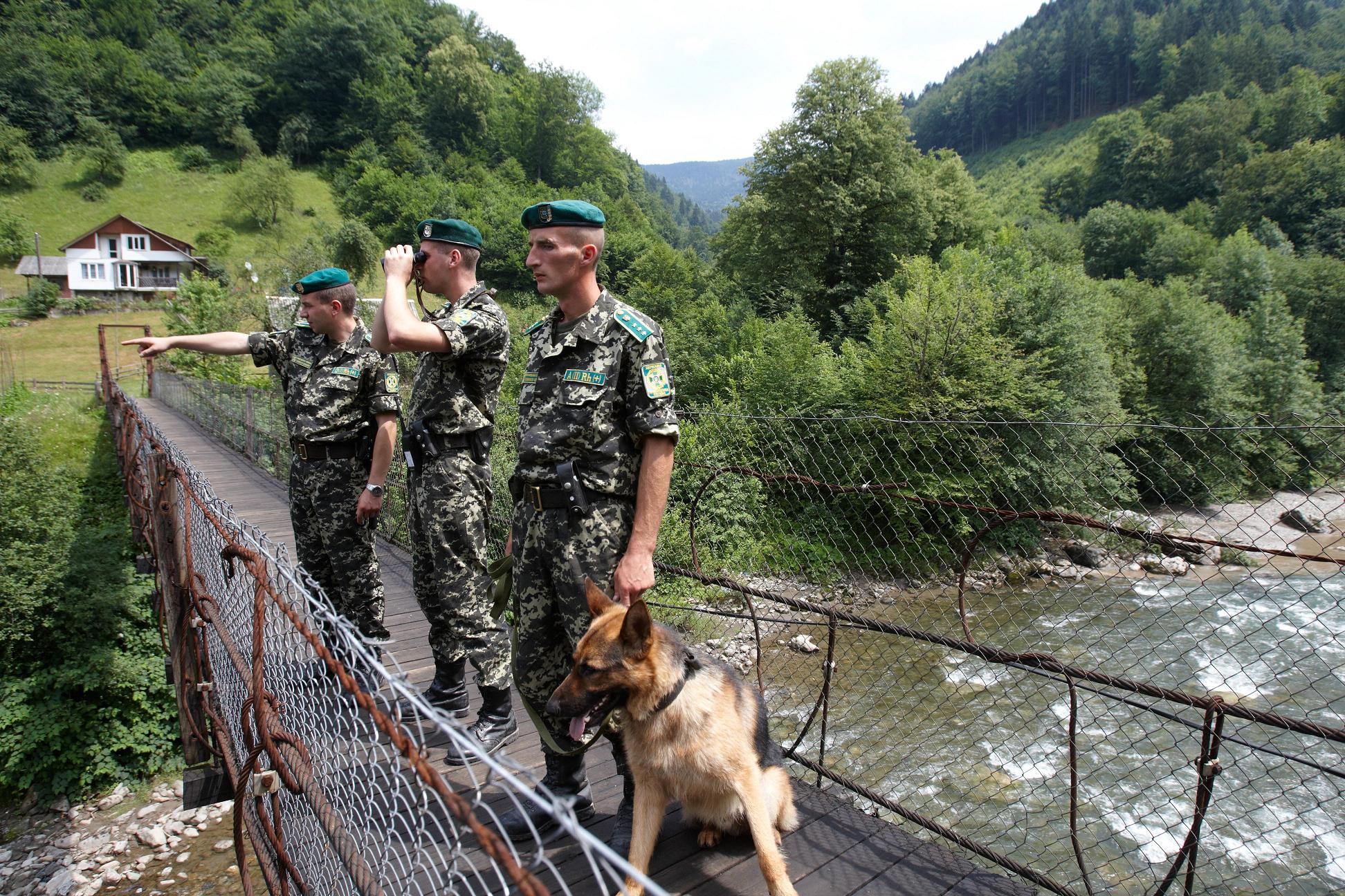 гпсу госпогранслужба пограничники граница патруль собака / dpsu.gov.ua