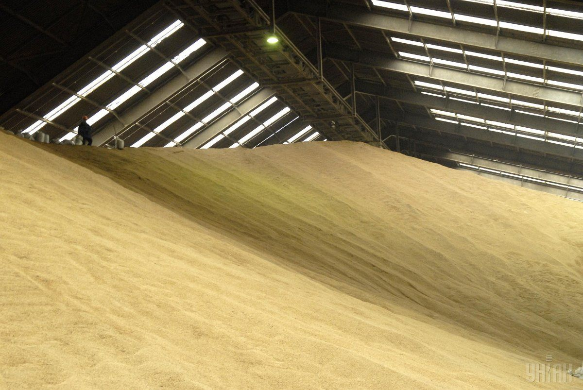 In the next five years, Ukraine will not give up on the export of grain / Photo from UNIAN