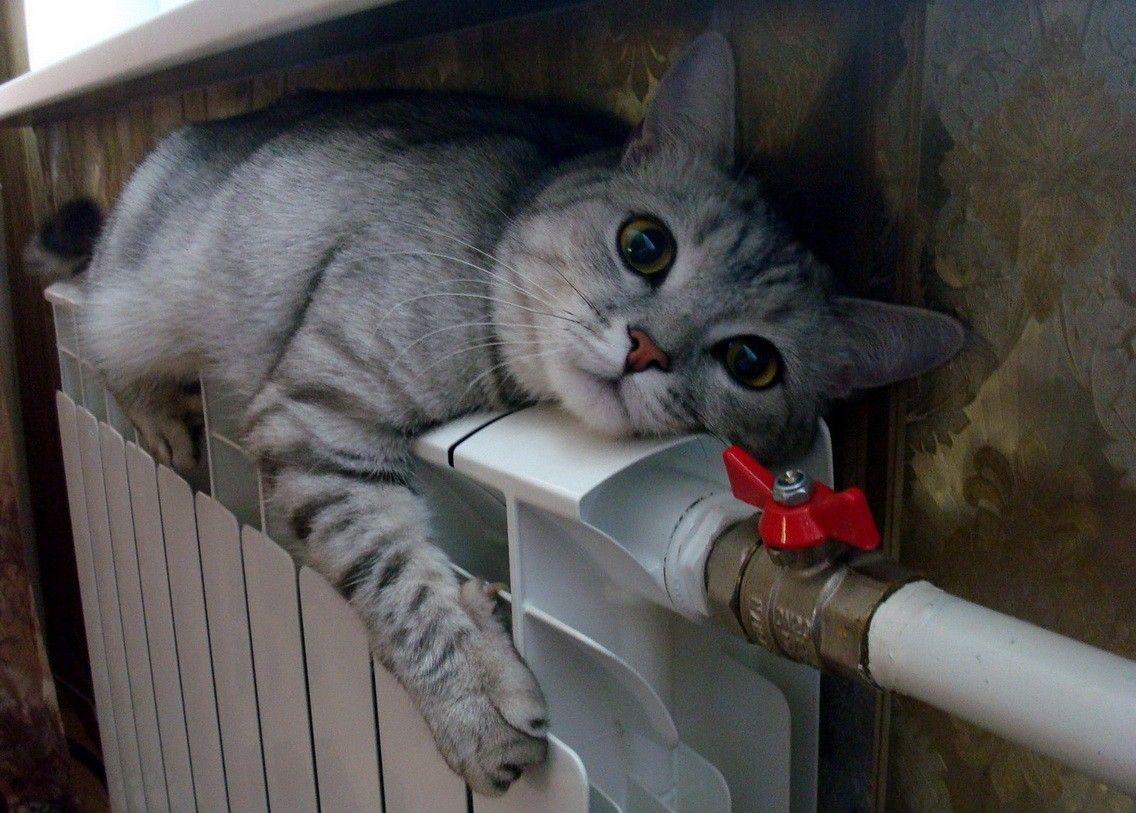 Чи радієте ви опалювальному сезону? / Фото santex-nk.ru