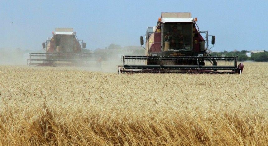 Українські аграрії побили рекорд зі збору зерна