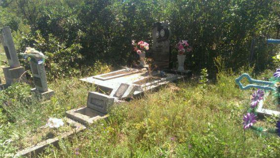 Невідомі побили надгробки на сільському цвинтарі / od.npu.gov.ua