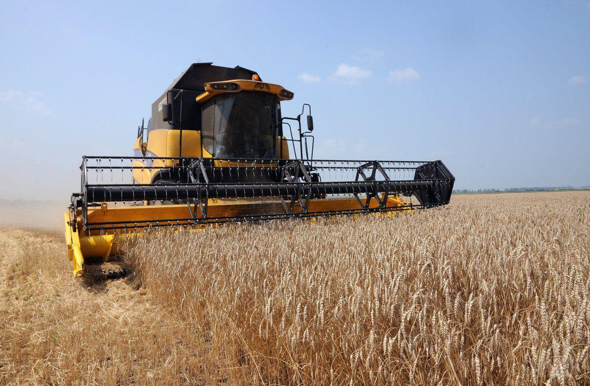 Аграрии собрали неменее 8 млн. тонн подсолнечника