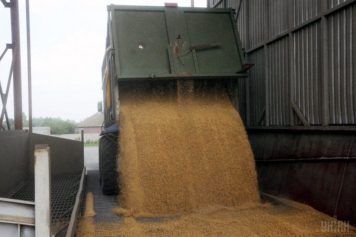 Минсельхоз США повысил прогноз урожая зерновых в Украине на 5%- до 64,1 млн тонн