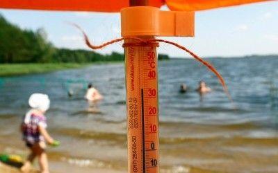 Сумасшедшая жара: Как высокая температура влияет на окружающую среду title=