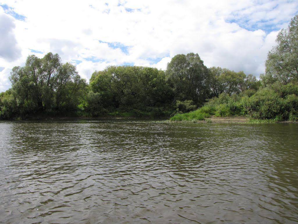 Вгосударстве Украина задержали 3-х русских рыбаков, случайно заплывших пореке заграницу