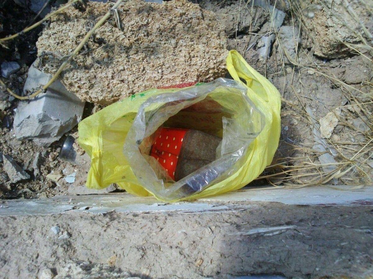 Вибухівка була знайдена біля навчального закладу / Сайт Держприкордонслужби України