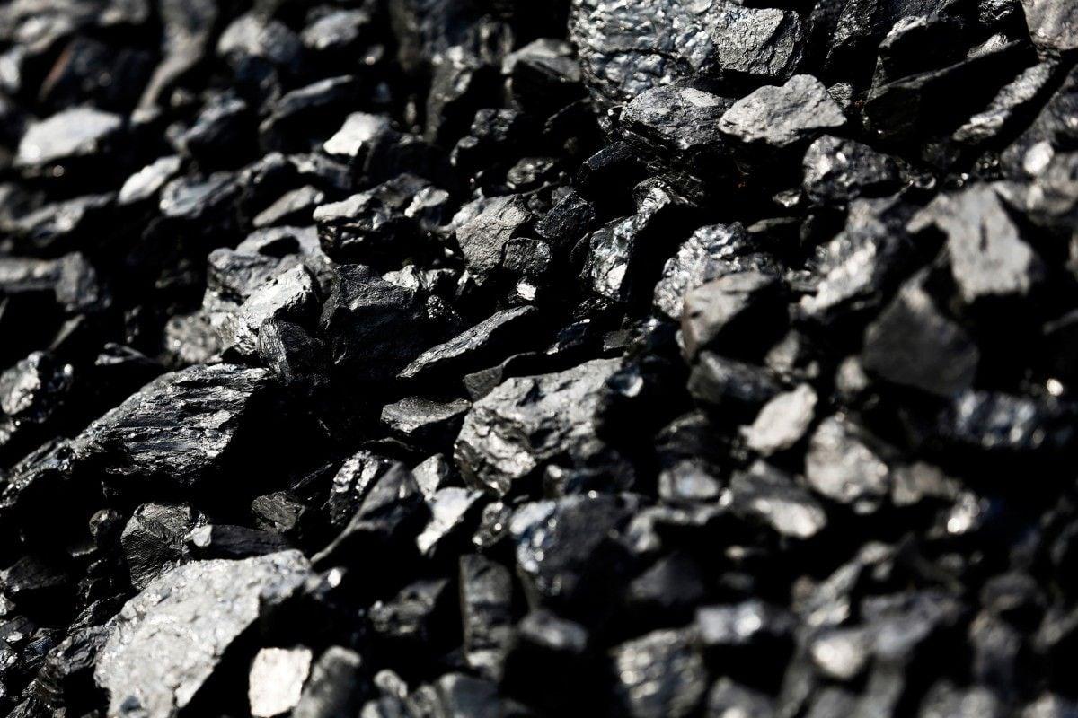 Дорогоцінний вугілля / REUTERS