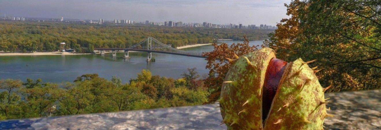 Завтра у Києві без опадів, температура вдень до +8°
