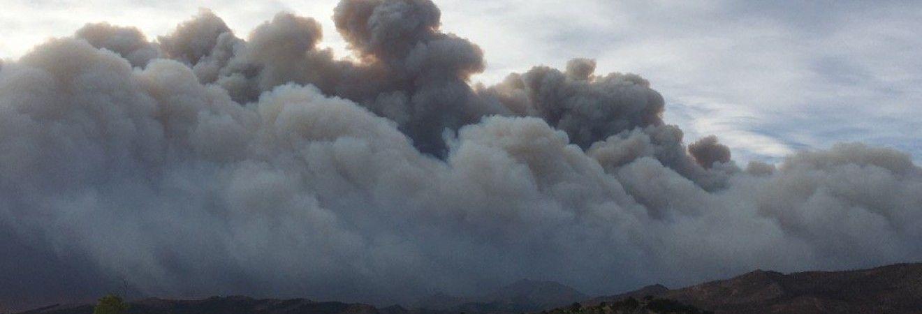 У Колорадо через лісову пожежу евакуюють місцевих жителів (фото, відео)