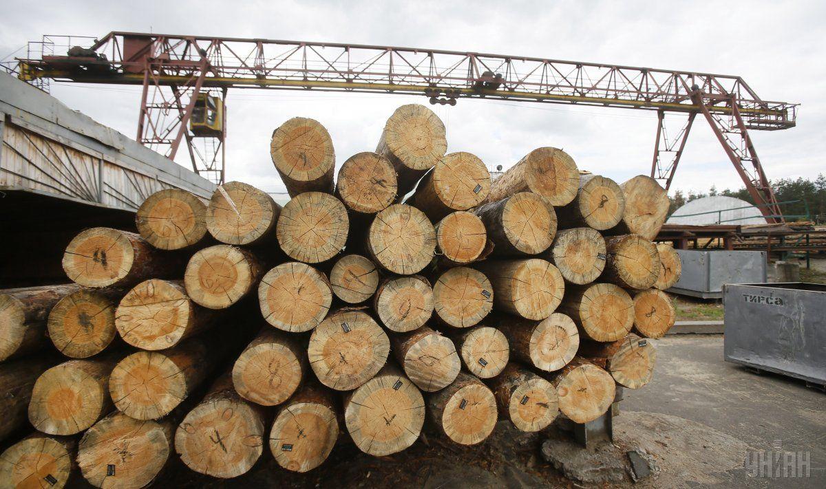 Гройсман обэкспорте леса-кругляка: «Украина— нелесопилка»