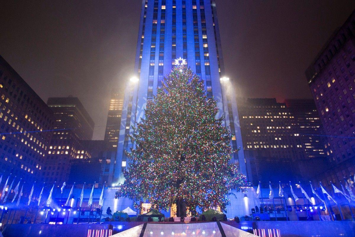 В Нью-Йорке вечером 30 ноября официально зажгли главную елку города / Фото REUTERS