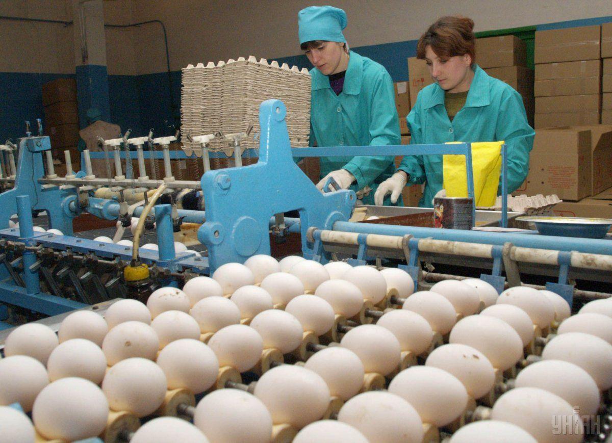 Насколько упали вцене яйца вгосударстве Украина