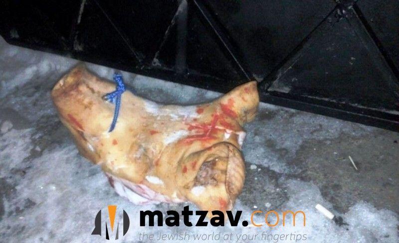 Нападавшие вырезали свастику на свиной голове / Фото matzav.com