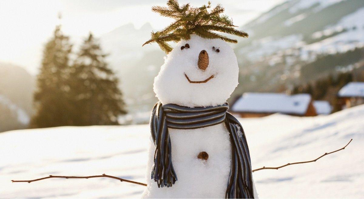 """Німецький машиніст прийняв сніговика на рейках за людину, доля сніжного """"винуватця"""" залишається невідомою"""