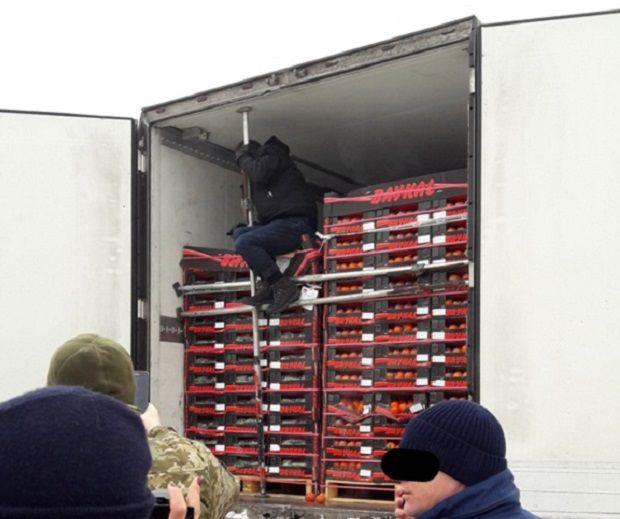 Украинские таможенники отыскали вовощах ехавшего вГерманию иранца