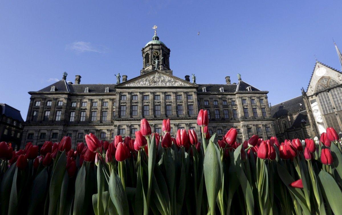 Нидерланды небудут задействовать компьютеры впарламентских выборах