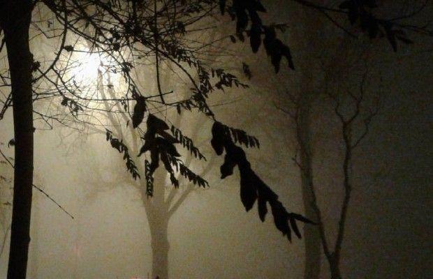 ВГСЧС поведали, сколько вКиеве продержится туман