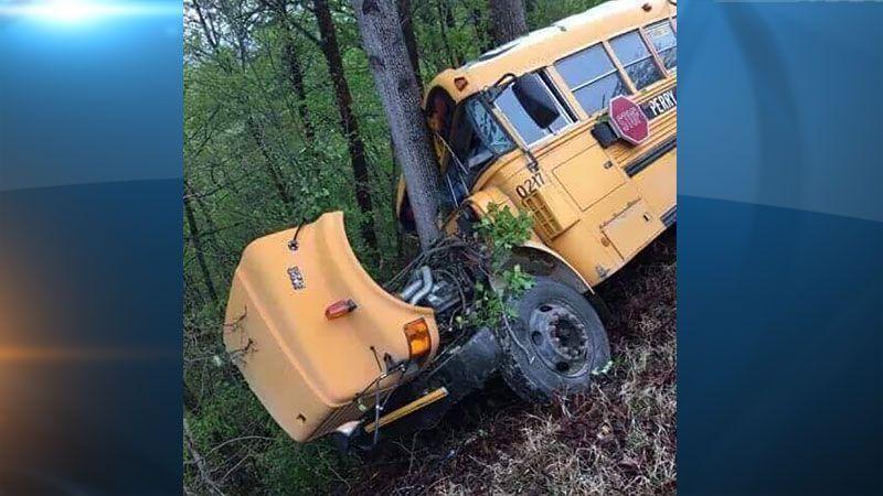 ВСША ученический автобус врезался вдерево из-за выбежавшего оленя